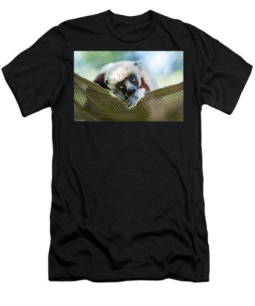 Lonely Lemur Men's T-Shirt (Athletic Fit)