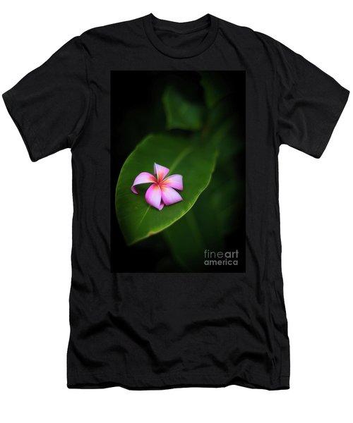 Fallen Plumeria Men's T-Shirt (Athletic Fit)