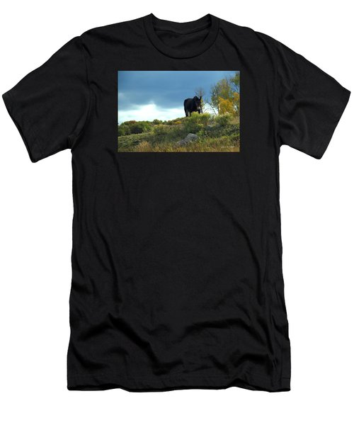 Lonesome Donkey Men's T-Shirt (Athletic Fit)