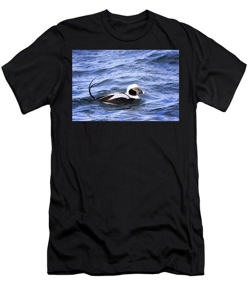 Long-tailed Duck 2 Men's T-Shirt (Athletic Fit)