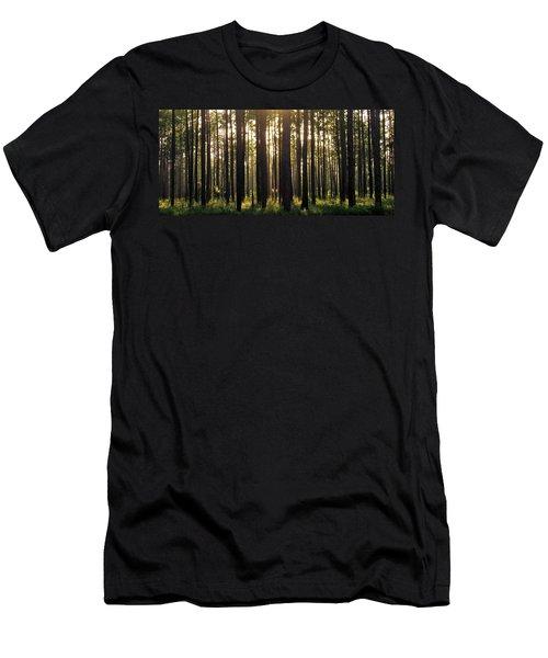 Longleaf Pine Forest Men's T-Shirt (Athletic Fit)