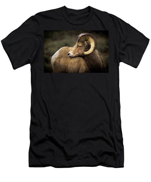 Looking Back - Bighorn Sheep Men's T-Shirt (Athletic Fit)
