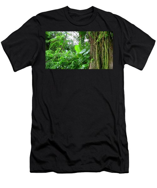 Looking Down From Yokahu Men's T-Shirt (Athletic Fit)