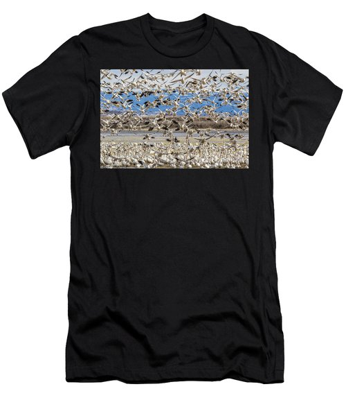 Looking For A Place To Land Men's T-Shirt (Athletic Fit)