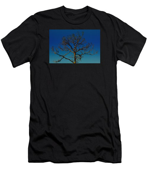 Looking Up, Sunrise, Myakka State Forest Men's T-Shirt (Athletic Fit)
