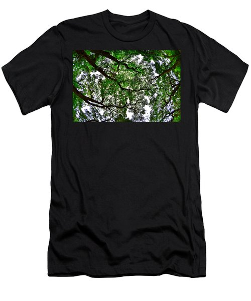 Looking Up The Oaks Men's T-Shirt (Athletic Fit)