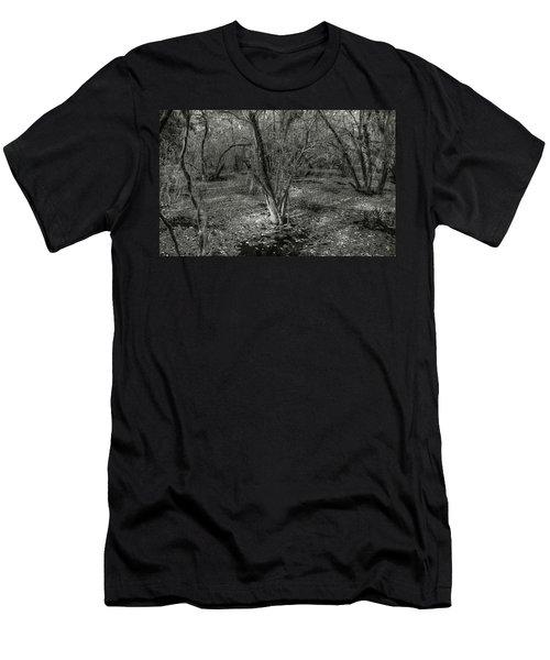 Loop Road Swamp #3 Men's T-Shirt (Athletic Fit)