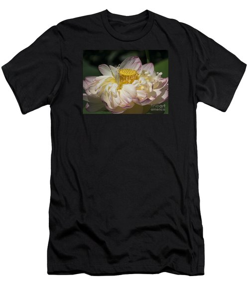 Lotus 2015 Men's T-Shirt (Athletic Fit)