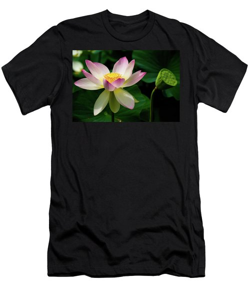 Lotus Lily In Its Final Days Men's T-Shirt (Athletic Fit)