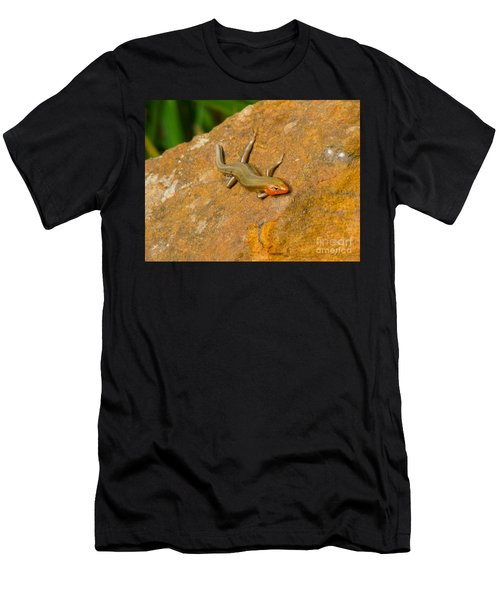 Lounging Lizard Men's T-Shirt (Athletic Fit)