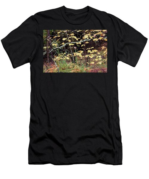 Lovely Autumn Witch Hazel -   Men's T-Shirt (Athletic Fit)