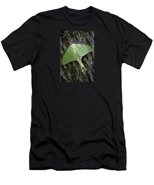 Luna Moth Men's T-Shirt (Slim Fit) by Marie Hicks
