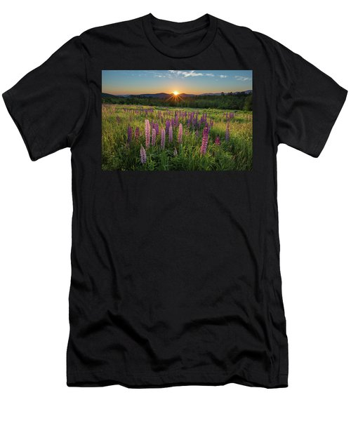 Lupine Sunrise Men's T-Shirt (Athletic Fit)