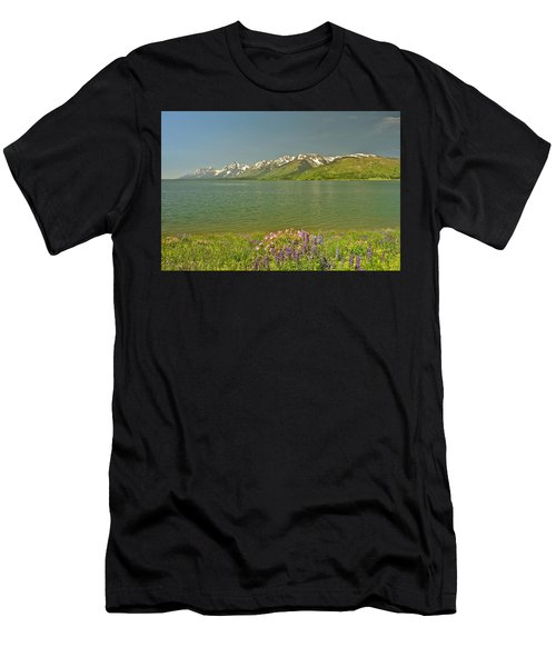 Lupines In The Tetons Men's T-Shirt (Athletic Fit)