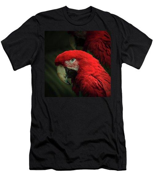 Macaw Portrait Men's T-Shirt (Athletic Fit)