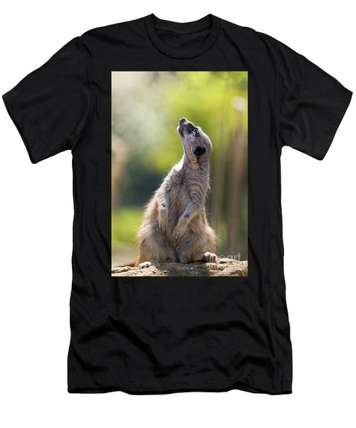 Magical Meerkat Men's T-Shirt (Athletic Fit)