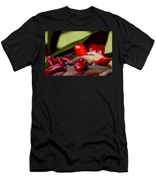 Magnolia Seeds Men's T-Shirt (Slim Fit) by Christopher Holmes