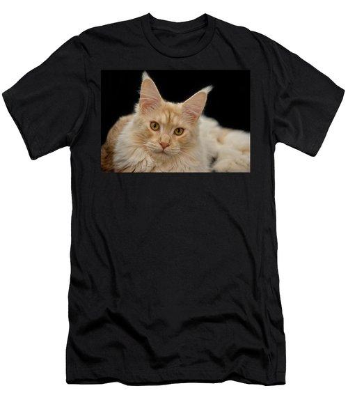 Maine Coon Men's T-Shirt (Athletic Fit)