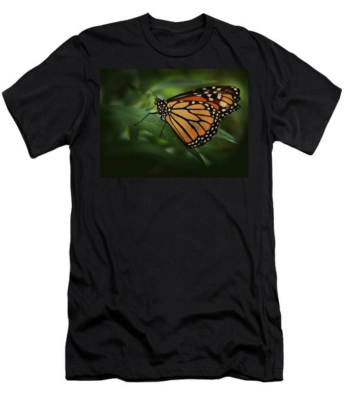 Majestic Monarch Men's T-Shirt (Athletic Fit)