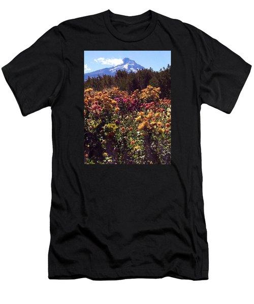 Majestic Mount Hood  Men's T-Shirt (Athletic Fit)