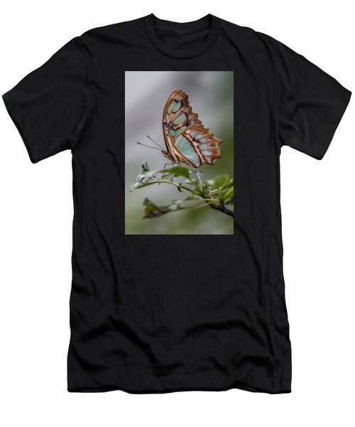 Malachite Butterfly Profile Men's T-Shirt (Athletic Fit)