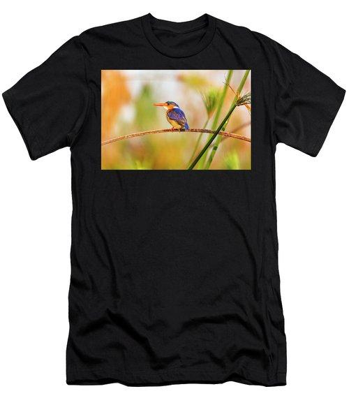 Malachite Kingfisher Hunting Men's T-Shirt (Athletic Fit)