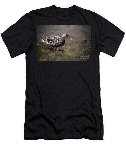 Malard,duckling Men's T-Shirt (Athletic Fit)