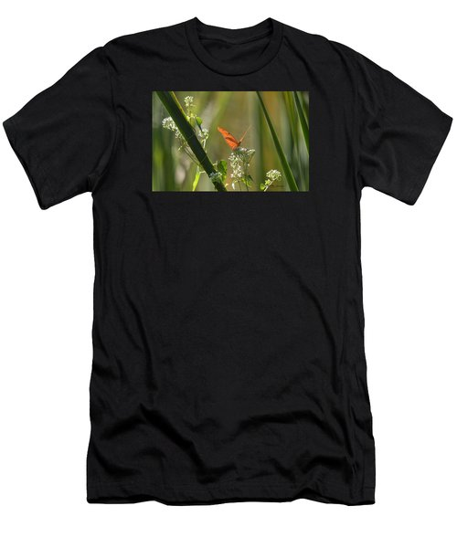 Male Julia Heliconia Butterfly Men's T-Shirt (Athletic Fit)