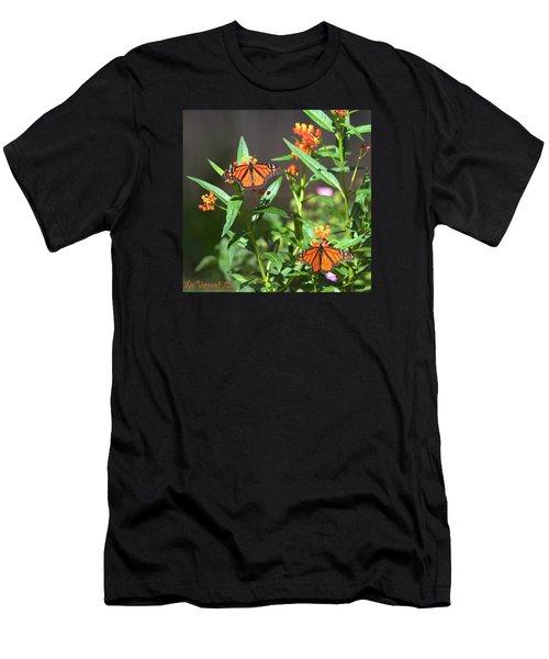 Male Monarch Butterflies Men's T-Shirt (Athletic Fit)
