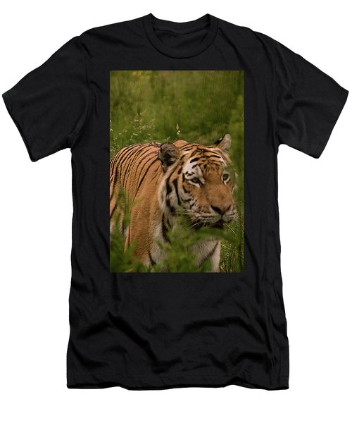 Male Tiger Men's T-Shirt (Athletic Fit)