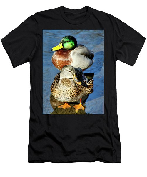 Mallard Couple Men's T-Shirt (Athletic Fit)