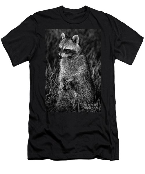Mama Raccoon Men's T-Shirt (Athletic Fit)