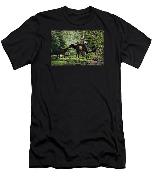 Men's T-Shirt (Athletic Fit) featuring the photograph Elk Calf - Mother Rmnp Co by Margarethe Binkley