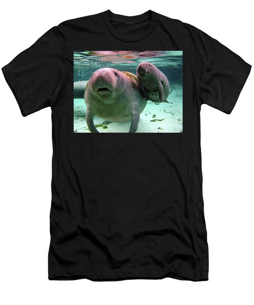 Manatee Mom And Calf Men's T-Shirt (Athletic Fit)