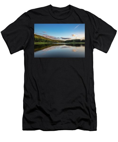 Mandelholz, Harz Men's T-Shirt (Athletic Fit)