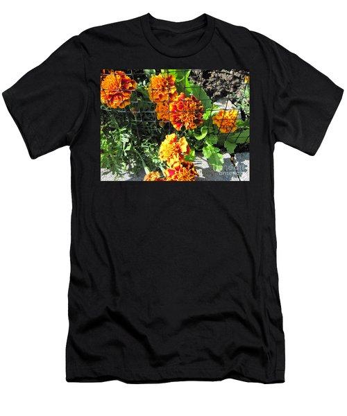 Marigolds In Prison Men's T-Shirt (Athletic Fit)