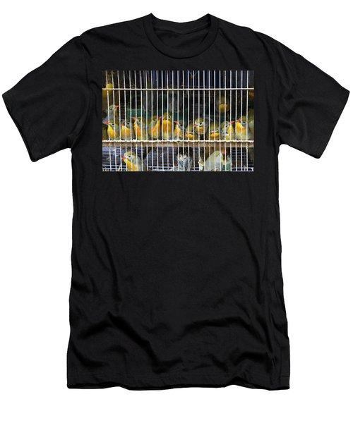 Market Finches Men's T-Shirt (Athletic Fit)