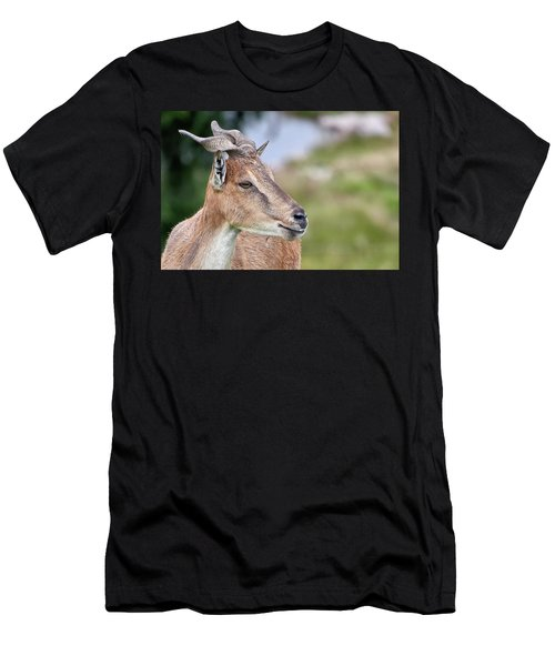 Markhor Men's T-Shirt (Athletic Fit)