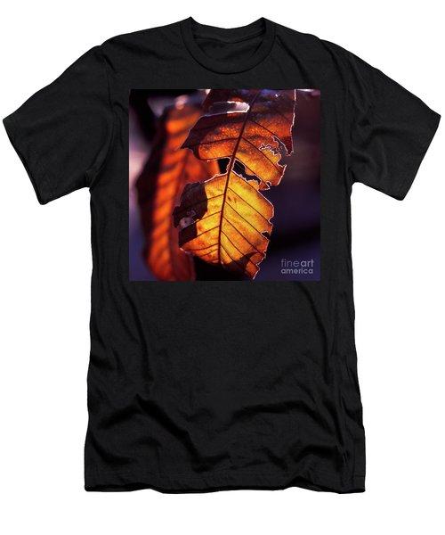 Maron Men's T-Shirt (Athletic Fit)