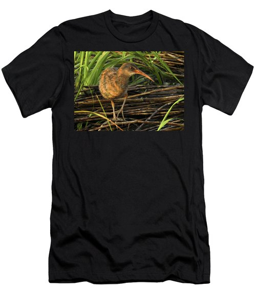 Marsh Hen Men's T-Shirt (Athletic Fit)