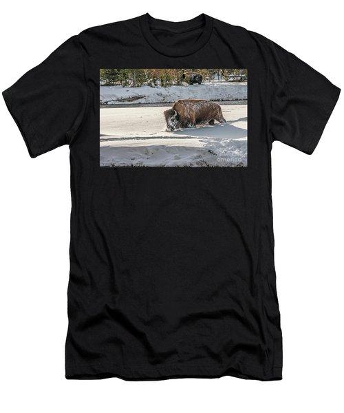Masked Bison Men's T-Shirt (Athletic Fit)
