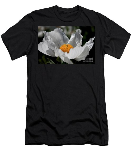 Matilija Poppy Men's T-Shirt (Athletic Fit)