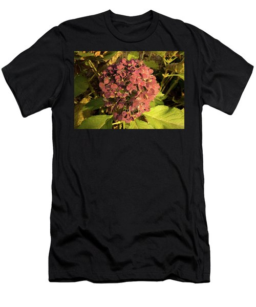 Mature Hydrangea Blossom Cluster Men's T-Shirt (Athletic Fit)