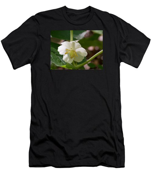 May-apple Blossom Men's T-Shirt (Athletic Fit)