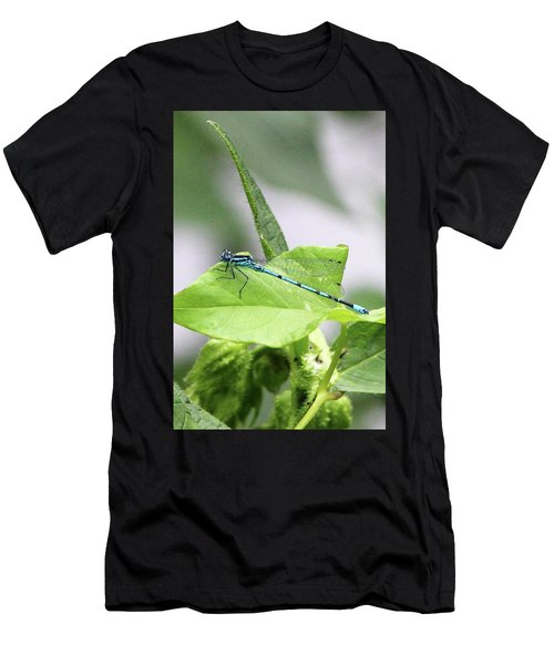 Mayfly Men's T-Shirt (Athletic Fit)