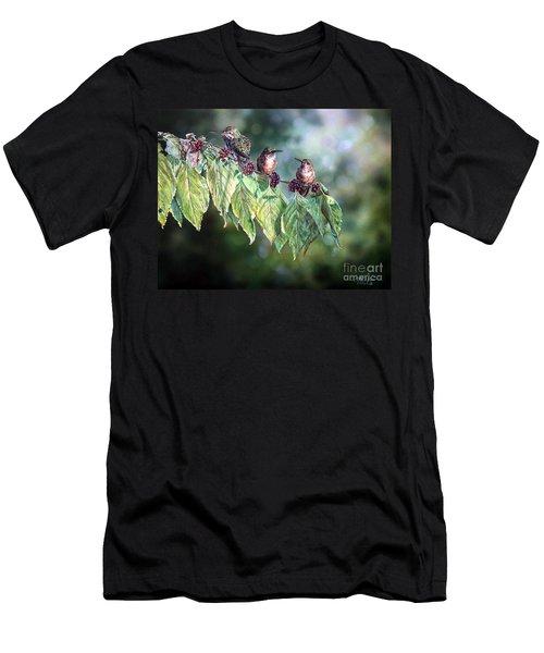 Meadow Men's T-Shirt (Athletic Fit)