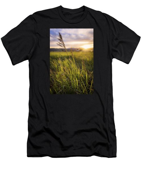Meadow Light Men's T-Shirt (Athletic Fit)