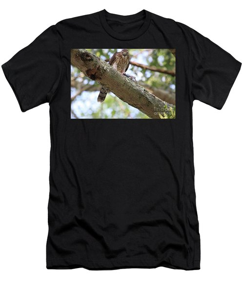 Mean Hawk At Dinner Time Men's T-Shirt (Athletic Fit)