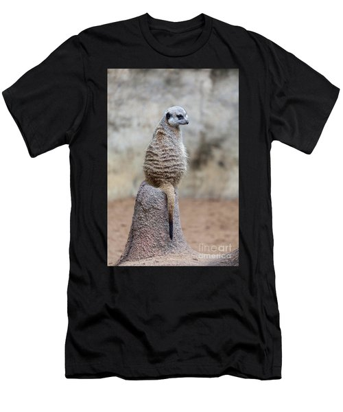 Meerkat Sitting And Looking Right Men's T-Shirt (Athletic Fit)