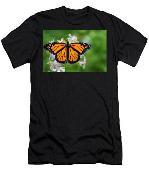 Migration Men's T-Shirt (Athletic Fit)